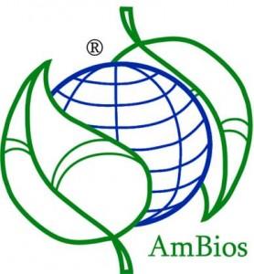 bando-ambios-community-mostrami